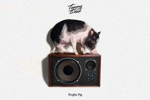 Tommy Trash Previews 'Truffle Pig'