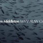 Tom Middleton- Wyv Auw Chu