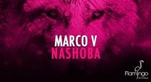 MarcoV