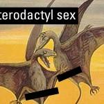 pterodactyl sex 02c
